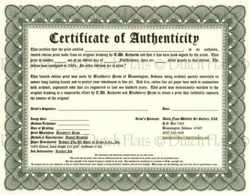 """This is an image I used after searching for """"certificate of authenticity Sample"""" on Google Images."""