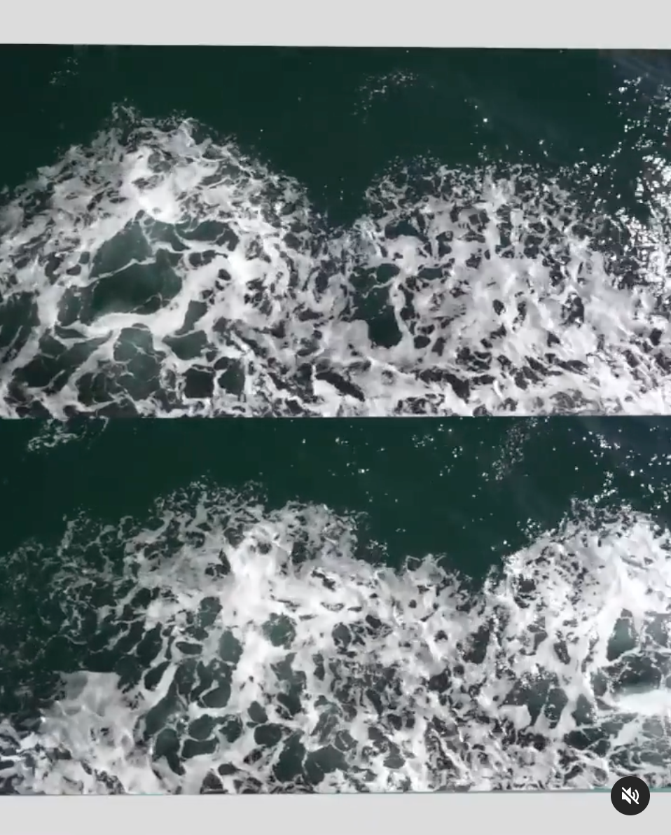 A study of the ocean. Watch the video here.